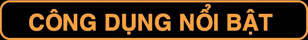 CONG DUNG-02